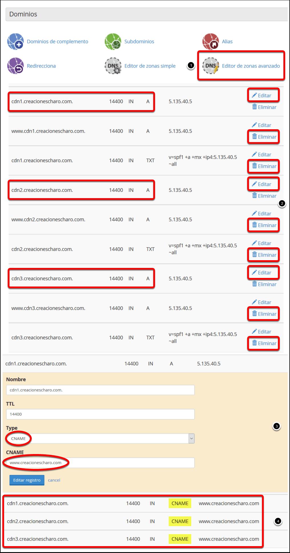 Entradas DNS en cPanel para crear CDN Virtual